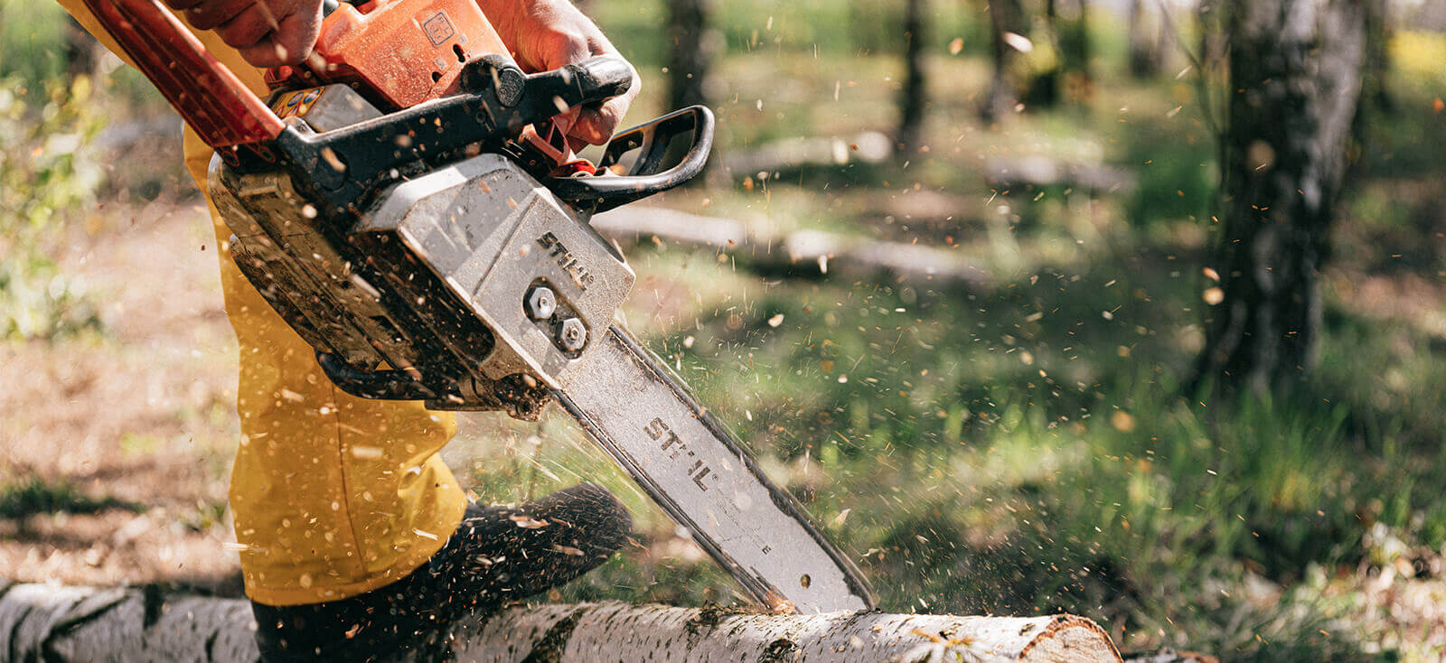 10 Best Cordless Chainsaw 2021